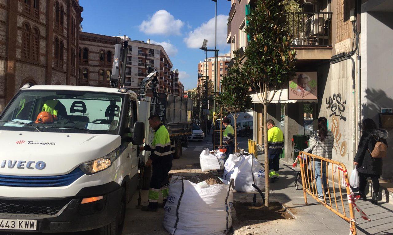 arbres_carrer-mallorca-e1582190045334-1280x766.jpg